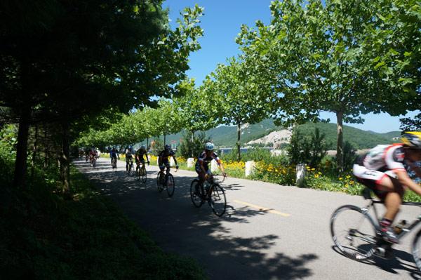 沿途绿树蓝天相映,空气清新,风光秀美