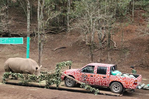 云南野生动物本底数据采集在普洱太阳河国家公园进行
