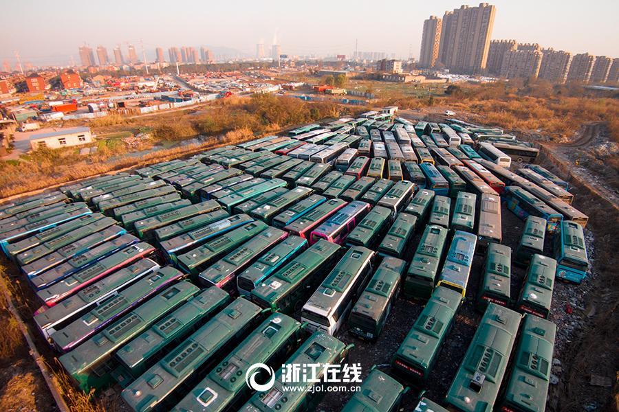 杭州/12月18日下午,浙江在线记者在杭州南庄兜附近的一块荒地上找到...
