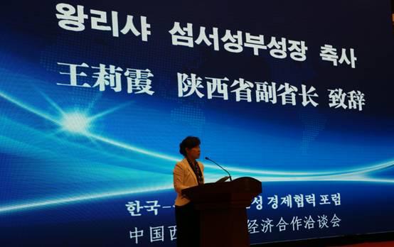 中国西部-韩国经济合作洽谈会在西安举行