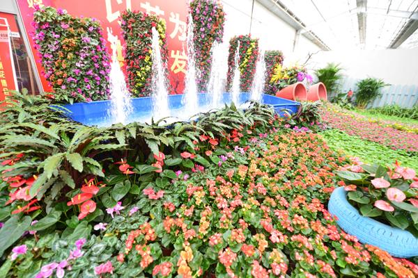 届中国 青州 花卉博览交易会开幕