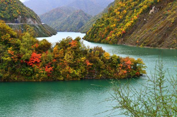 据悉,白马王朗景区内森林覆盖率达90%以上,植被种类繁多,秋季的红叶
