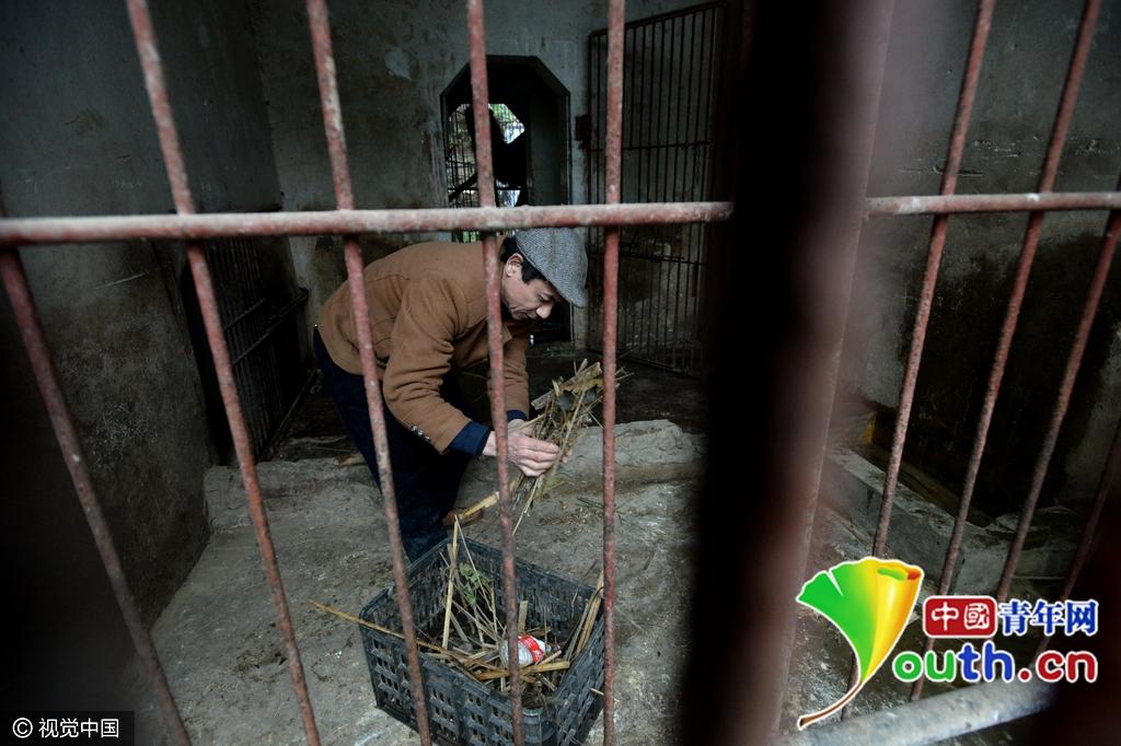 """重庆现""""袖珍动物园"""" 生存环境恶劣动物生无可恋"""