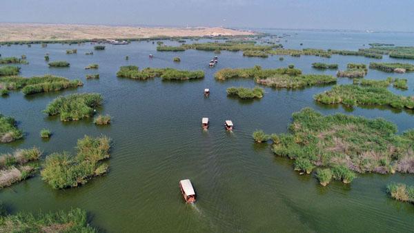 【2018网络媒体宁夏行】沙湖美景天下一绝 绿色发展实干兴宁