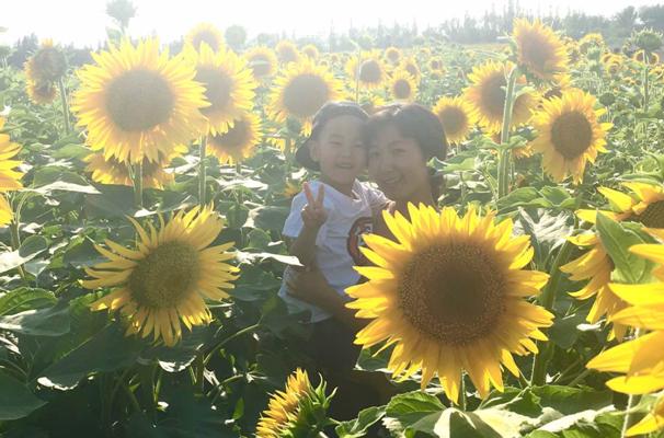 2017克拉玛依市乌尔禾区首届向阳花节开幕 - 中国日报