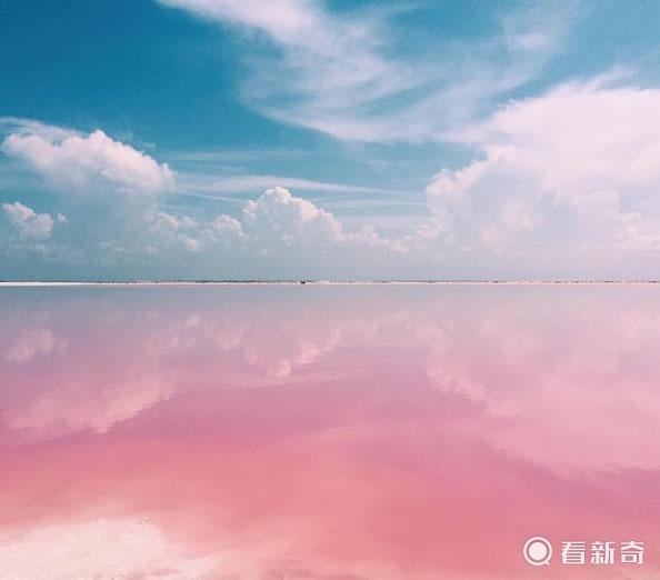 墨西哥有个罕见的粉红色湖泊 重点还是天然的